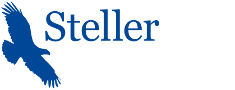 http://www.stellersystems.co.uk/wp-content/uploads/sites/2/2016/03/stelleryachtslogo90-trans-white.png